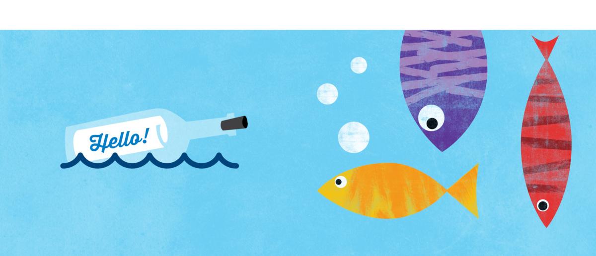 Indi Fish Brand Images 2020 FA36