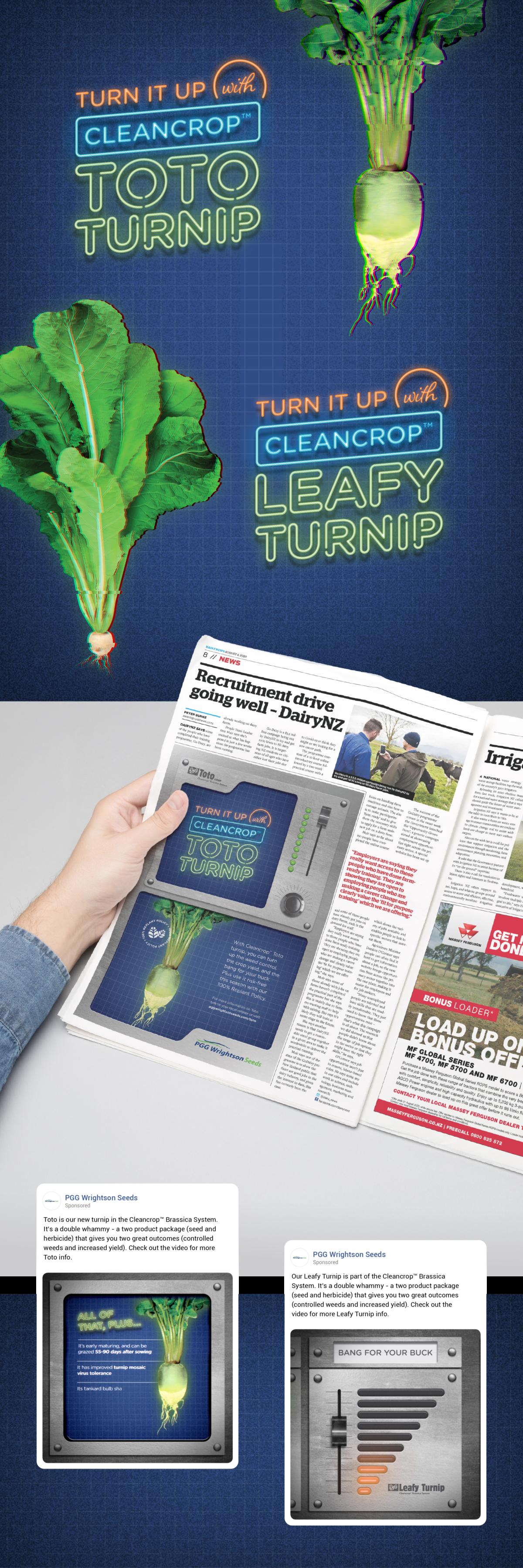 PGWS Turnip Campaign Portfolio 2