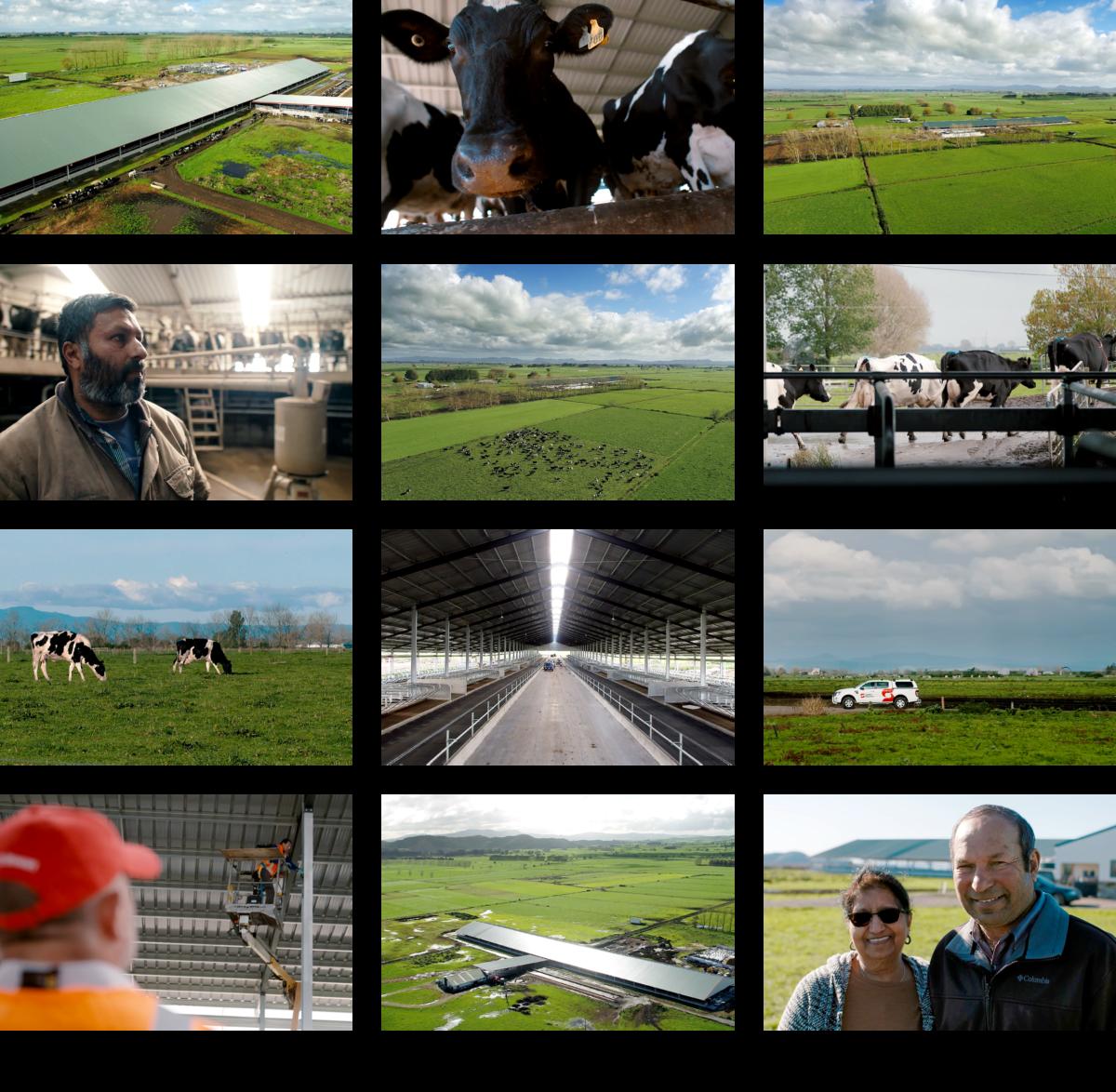 Portfolio 2020 Page Dairy Barns4